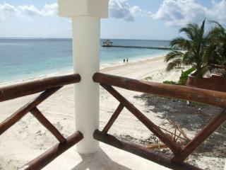 Oceanfront 1BR condo, Stunning View, Very Private - Puerto Morelos vacation rentals