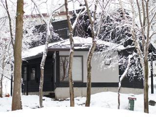 Kallin Cottage Hakuba, ski-in/out - Hakuba-mura vacation rentals