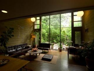 Restored mid-century apt, 25m walk to downtown. - Austin vacation rentals