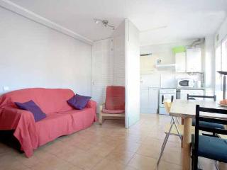 Light Apartment To Rent For 2-4 People Near Famous Park Guell - Barcelona vacation rentals