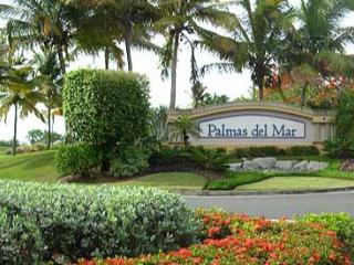 Palmas Del Mar: Wonderful  Home with Private Pool - Puerto Rico vacation rentals