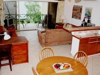 Ocean view Condo - up to 6 PAX - Flamingo Beach - Santa Cruz vacation rentals