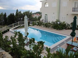 Luxury Apartment with swimming pool - A3 - Klek vacation rentals