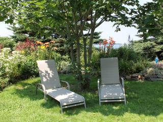 Brier View Cottage, steps from the Ocean - Freeport vacation rentals