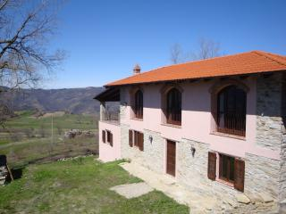 Spacious farmhouse in tranquil village - Prunetto vacation rentals