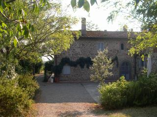 Tuscan villa overlooking 20 minutes from florence - Capraia e Limite vacation rentals