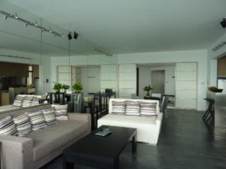Gorgeous Condo with Deck and Internet Access - Zhuhai vacation rentals