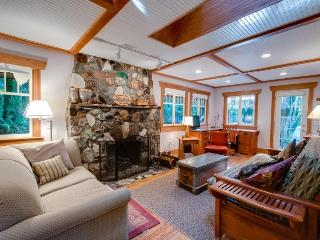 Cozy dog-friendly riverfront cottage w/ charming interior & hot tub! - United States vacation rentals