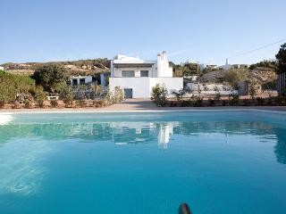 Private villa with private pool next to Naoussa - Naoussa vacation rentals