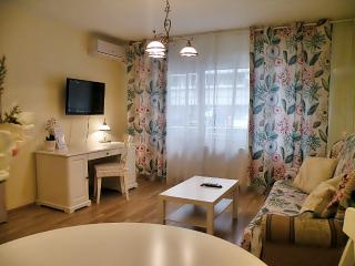 Exquisite one bedroom downtown city - Bucharest vacation rentals