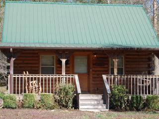 "Smoky Mountain ""CREEK HEAVEN"" cabin on Cosby Creek - Cosby vacation rentals"