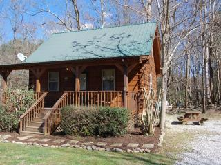"Smoky Mountain Creek ""JONS POND"" cabin - Cosby vacation rentals"