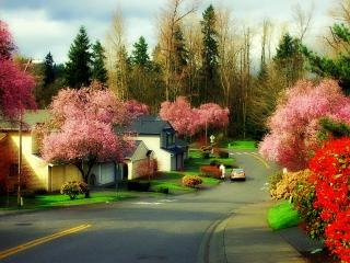 Comfort of home for your vacation! - Kirkland vacation rentals