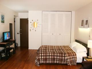 Uptown studio, express to downtown - Oak Park vacation rentals
