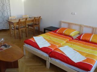 Downtown apartment for 7ppl+parking - Czech Republic vacation rentals