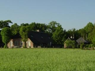 Old farm with view, modern comfort - Overijssel vacation rentals
