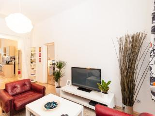 Apt 10 minutes from the downtown - Bohemia vacation rentals