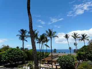 Kihei Akahi 2 Bedroom C302 - Kihei vacation rentals