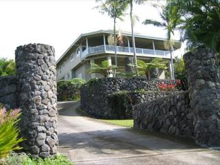 Ono Hale: Gorgeous Home with pool. Breathtaking ocean views. - Kailua-Kona vacation rentals
