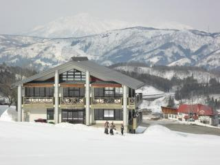 Boutique ski-in ski-out lodge in ideal location - Shimotakai-gun vacation rentals