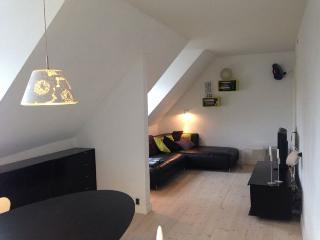 Cosy Copenhagen apartment near Skt. Hans Torv square - Copenhagen vacation rentals