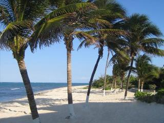 Beautiful Ocean front Villa with 2 bedrooms and 2 baths - Grand Cayman vacation rentals