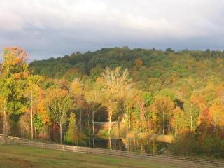 The River Cabin at Grove River Ranch - Gillsville vacation rentals