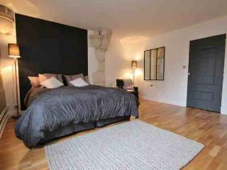 A CHIC 3 bedroom 2 bathroom with balcony in DIJON - Burgundy vacation rentals