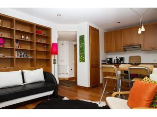 Central 1 Bedroom with Wifi and Garden - London vacation rentals