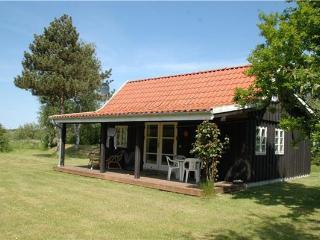 44857-Holiday house Elsegaarde - Elsegaarde Strand vacation rentals