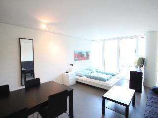 Bright Condo with Internet Access and Balcony - Lucerne vacation rentals