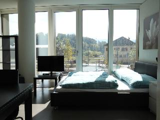 LU KKL II - Apartment - Lucerne vacation rentals