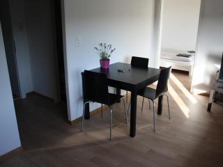 ZH White - Letzigrund HITrental Apartment Zurich - Schlieren vacation rentals