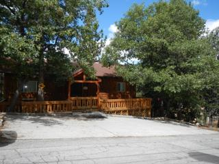 #045 GreatView Lodge - Big Bear Lake vacation rentals