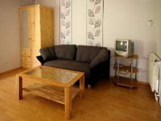 Vacation Apartment in Emmerich am Rhein - 484 sqft, quiet, modern, nice (# 4426) - Emmerich vacation rentals