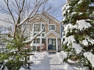 Pinoteau | 165 - Mont Tremblant vacation rentals