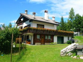 Enjoy the magnificent Dolomites - Tambre vacation rentals