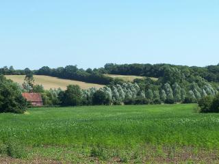 Sweet cottage on a working Suffolk  farm - Saxmundham vacation rentals