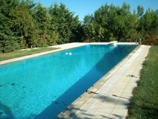 Family country house outside Athens - Athens vacation rentals