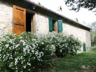 Tuscany Apartment in Old Chianti Farmhouse - Castellina In Chianti vacation rentals