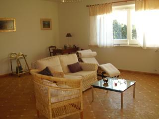 Beautiful 2 bedroom House in Castel Giorgio - Castel Giorgio vacation rentals