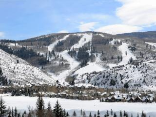 Luxury 2 Bed + Den in Arrowhead Resort at Beaver Creek. Easy Walk to Slopes! - Edwards vacation rentals