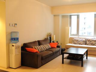 Convenient 1 bedroom Condo in Beijing - Beijing vacation rentals