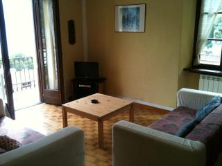 big apartment with wonderful view lake - Lombardy vacation rentals