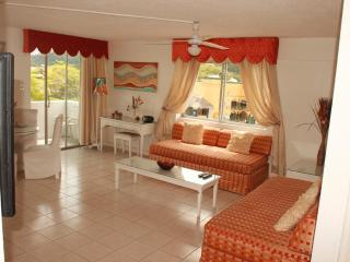 Fabulous beachfront  condo..heart of Ocho Rios - Ocho Rios vacation rentals