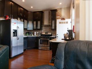 Modern Wrigleyville 2 Bedroom Close To Red Line - Lincolnwood vacation rentals