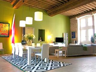 Superb property Beaune, Burgundy wine capital city - Beaune vacation rentals