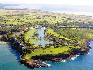 VIEWS x3 ** Marriott Resort use ** Cliff House apt - Lihue vacation rentals