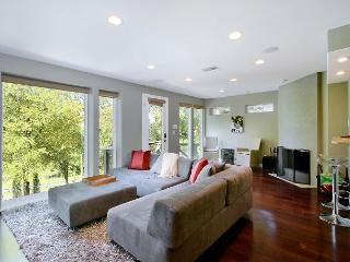 3BR/2.5 with rooftop deck.  Across the street from Zilker Park. - Austin vacation rentals
