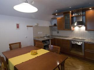 quiet & comfy 80m2 apartment with stunning views - Bohinjska Bistrica vacation rentals